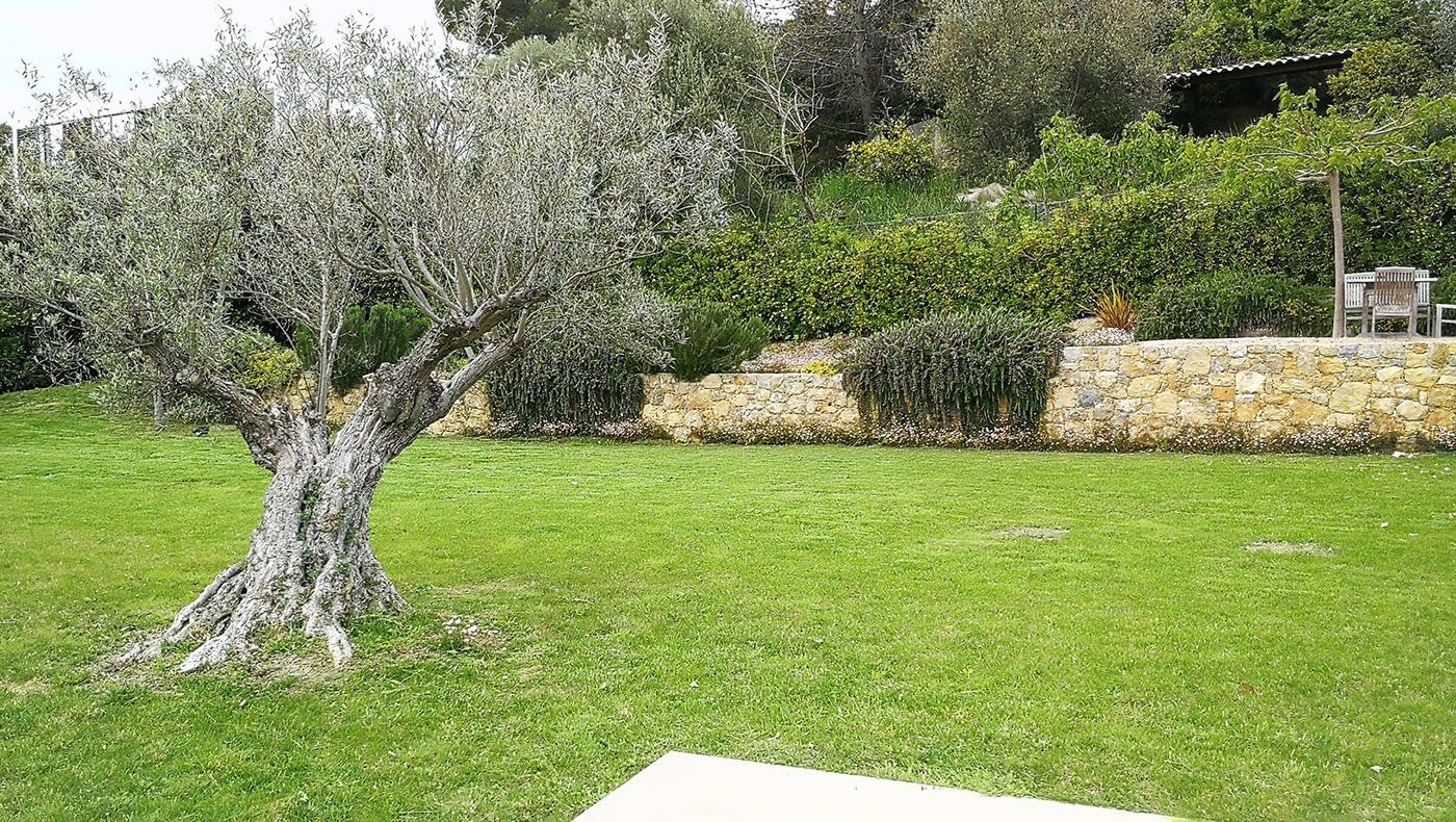 Conception et réalisation d'un jardin à Grasse, Plascassier